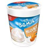 Algida Big Milk Yogurt Caramel Lody 450 ml