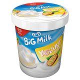 Algida Big Milk Yogurt Tropical Lody 450 ml