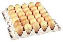 Świeże jaja Szkaradek 30 sztuk L