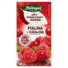 Herbapol Herbaciany Ogród Malina z żurawiną Herbatka owocowo-ziołowa 54 g (20 saszetek)