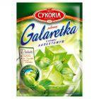 Cykoria Galaretka o smaku agrestowym 75 g