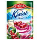Cykoria Kisiel o smaku żurawinowym 40 g