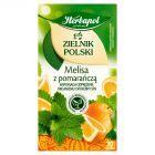 Herbapol Zielnik Polski Melisa z pomarańczą Herbatka ziołowo-owocowa 35 g (20 saszetek)