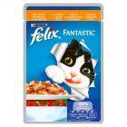 Felix Fantastic z kurczakiem i pomidorami w galaretce Pełnoporcjowa karma dla kotów 100 g