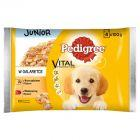 Pedigree Vital Protection Junior w galaretce Karma pełnoporcjowa 400 g (4 saszetki)