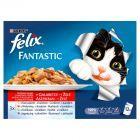 Felix Fantastic Wybór mięs w galaretce Karma dla dorosłych kotów 12 x 100 g