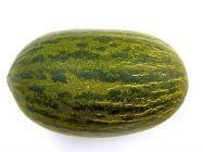 Melon zielony 1 szt