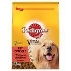 Pedigree Vital Protection Adult z wołowiną & drobiem Karma pełnoporcjowa 2,6 kg