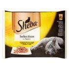 Sheba Selection in Sauce Kolekcja smaków drób Karma pełnoporcjowa 340 g (4 sztuki)