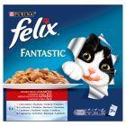Felix Fantastic Wiejskie smaki w galaretce Karma dla dorosłych kotów 2400 g (24 saszetki)