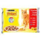 Friskies Karma dla kotów 400 g (4 x 100 g)