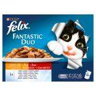 Felix Fantastic Duo Karma dla kotów wiejskie smaki w galaretce 1200 g (12 x 100 g)