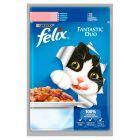 Felix Fantastic Duo Karma dla kotów z łososiem i sardynką w galaretce 100 g