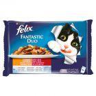 Felix Fantastic Duo Wiejskie smaki w galaretce Karma dla dorosłych kotów 400 g (4 saszetki)