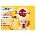 Pedigree Vital Protection Junior w galarecie Karma pełnoporcjowa 1,2 kg (12 x 100 g)