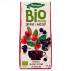 Herbapol Herbatka BIO aronia i malina 100 g