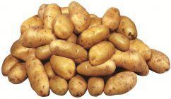 Ziemniak młody 1kg